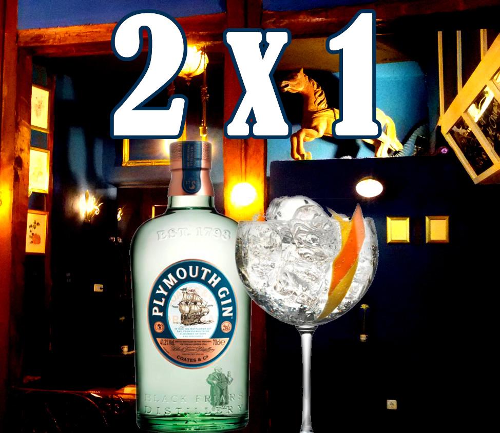 gin-plymouth 2x1